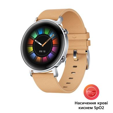 Смарт-годинник Huawei Watch GT2 42mm Classic Edition (55024475)